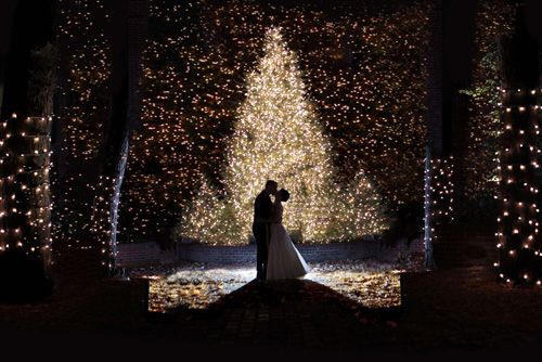 This would be for a perfect winter wedding winter wonderland weddings junglespirit Image collections
